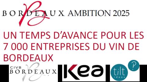 """""""Ambition 2025"""", le plan Bordeaux côté face"""
