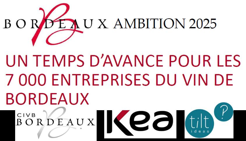 """""""Ambition 2025"""", le plan Bordeaux côté pile"""
