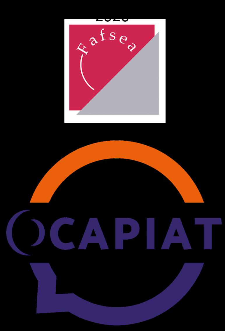 Fafsea devient Ocapiat, les nouveaux dispositifs de formation des salariés